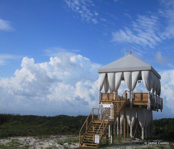 Alys Beach Tree House