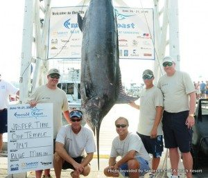 30A South Walton ECBC09 MarlinHanging 300x257 JUNE: Emerald Coast Blue Marlin Classic