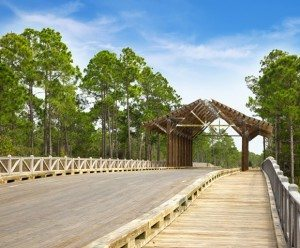 30A South Walton NatureWalk Bridge 1 300x248 NatureWalk at Seagrove