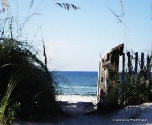 Inlet Beach Access
