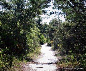 point washington nature trail