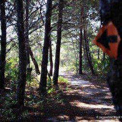 point washington nature trail biking
