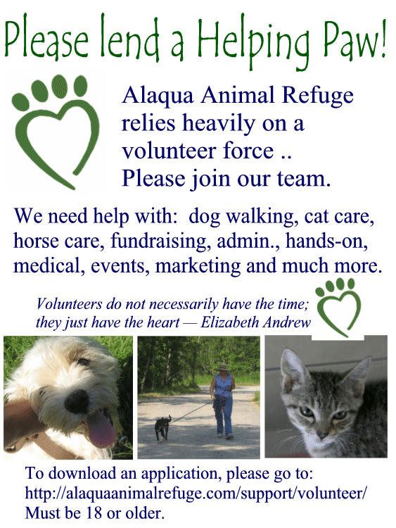 VolunteerFlyer