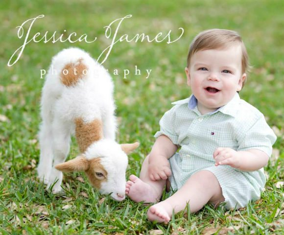 30A South Walton 1960134 677174688994900 1319832716 n Duckies Shop of Fun to Host Little Lamb Portrait Sessions