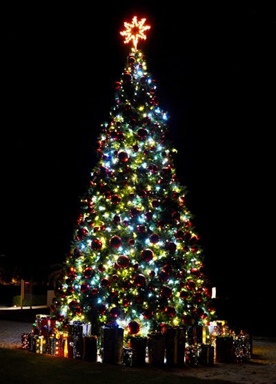 The Christmas tree at the Alys Beach amphitheater is the highlight of the show. Photo by Alys Beach