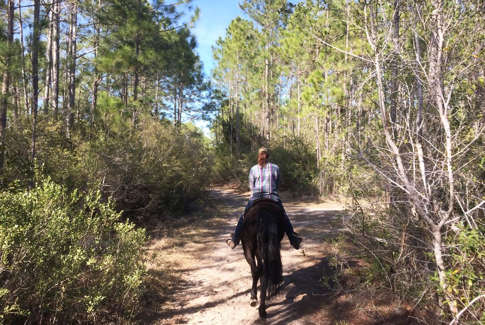 horseback-riding-trail