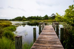 7 Places Near 30A to Enjoy in (Almost) Total Isolation