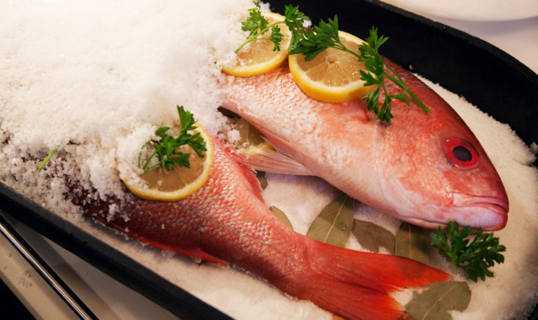 Four of the best tasting fish in florida have you tried for Best tasting fish