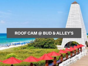 Bud & Alley's Roofdeck Web Cam in Seaside, Florida