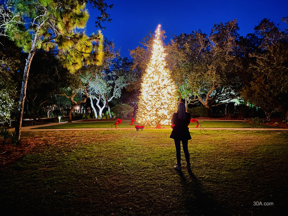 WaterColor, Florida, Cerulean Park, Christmas Tree