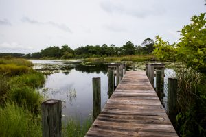 The Surprising History of Coffeen Nature Preserve and Topsail Hill