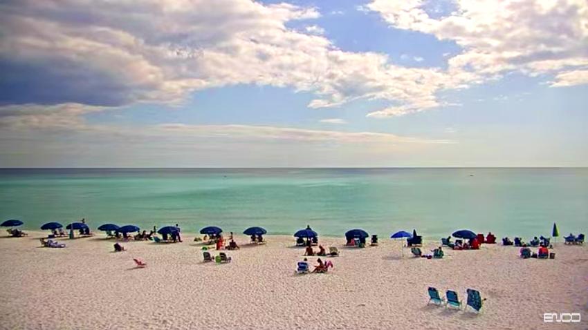 Whales' Tail Beachcam Seascape, Florida