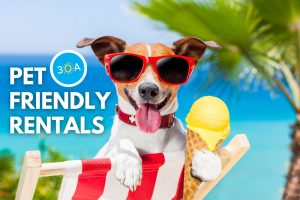 Pet Friendly Vacation Rental Homes Along Florida's Scenic 30A