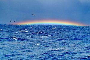 Top 7 Theories Behind the Mysterious Bermuda Triangle
