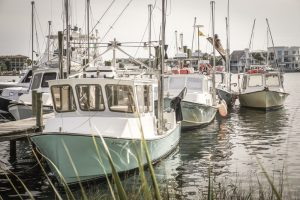 Harbor Dock's Mission To Keep Seafood Fresh and Local