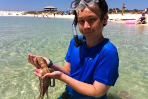 30A Sea Life Discovery Center: Inspiring the Next Generation To Protect Our Oceans
